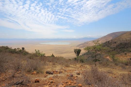 Le cratère du Ngorongoro à la saison sèche