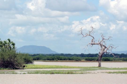 La réserve de Selous