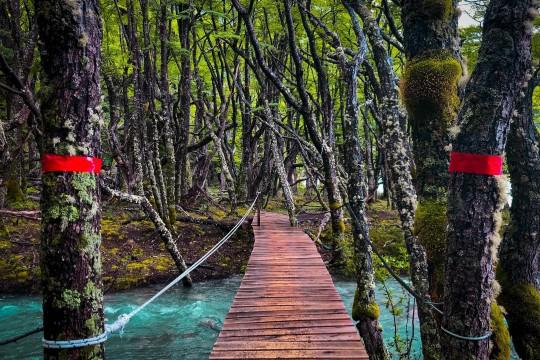Passerelle dans le Parque Nacional Los Glaciares