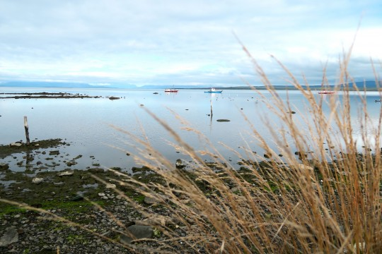 Le Fjord devant Puerto Natales