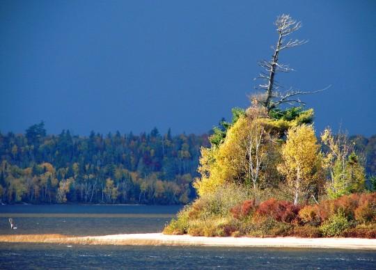 Les couleurs de l'automne Quebecois dans la Réserve faunique de Vérendrye
