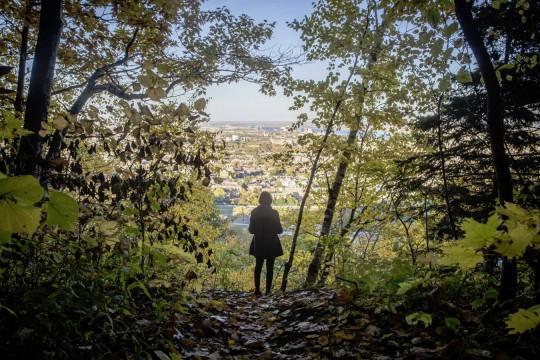 Parc Du Mont Royal, Montréal, Canada
